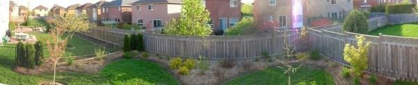 2008 back garden spring