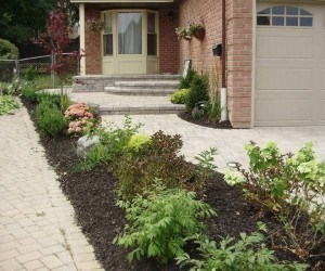 Front & Side yard Landscape Design Plan