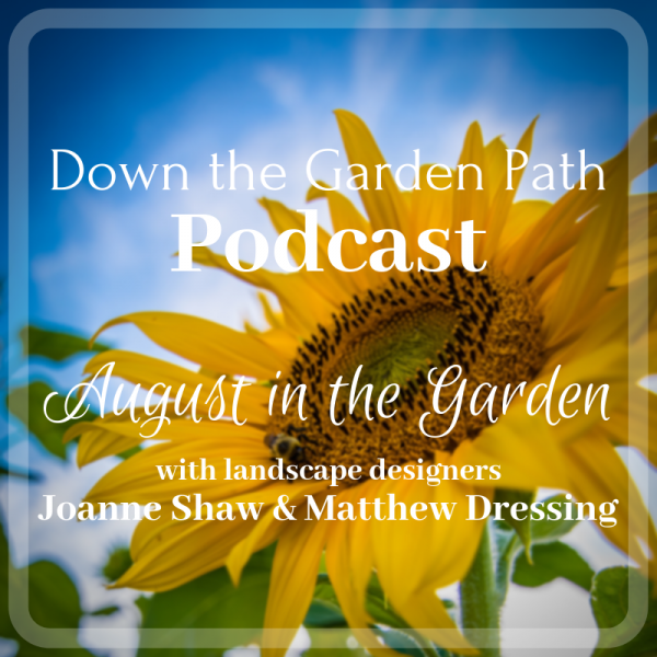 August in the Garden podcast image