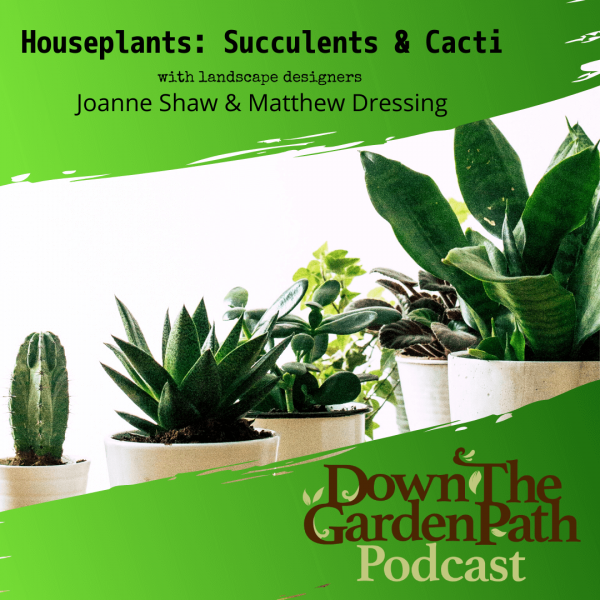 Down The Garden Path Podcast Houseplants: Succulents & Cacti
