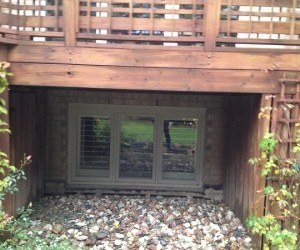 Backyard Master Plan