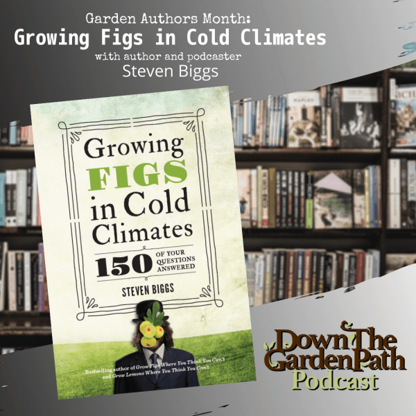 Book Cover image of Growing Figs in Cold Climates by Steven Biggs