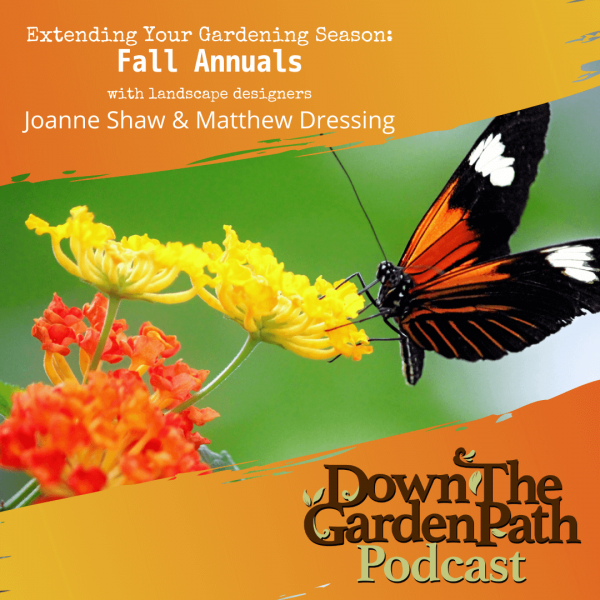 extending your gardening season with fall annuals