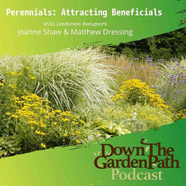 attracting beneficials