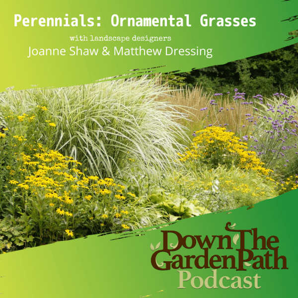 Perennials Ornamental Grasses