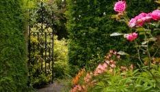 Toronto Botanical Garden Tour 2014