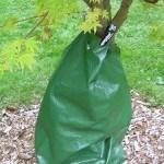 Treegator
