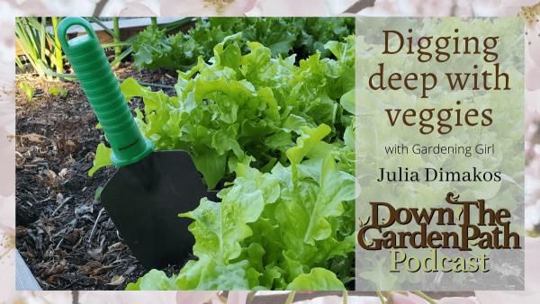 digging deep with veggies