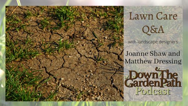 lawn care Q & A