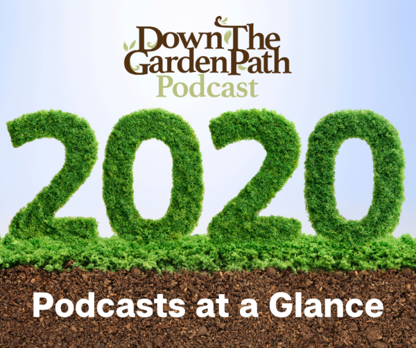 2020 podcasts at a glance