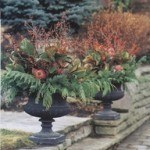 Matching Urns Winter Containers