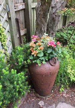 shady corner planter