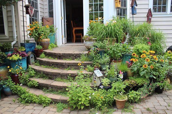 Garden Blogger Fling
